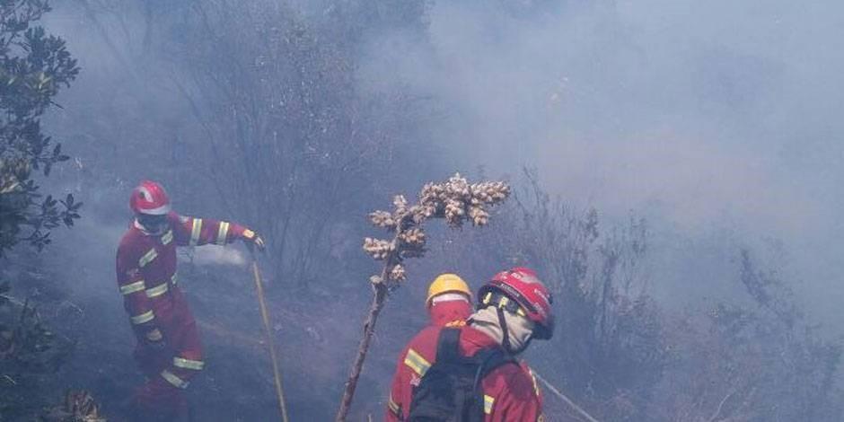 Busca a autores de incendios forestales