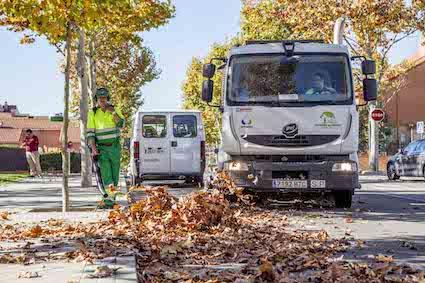 Servicio especial de recogida de hojas en Boadilla