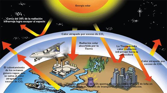 Daños a los seres vivos provocados por la radiación solar