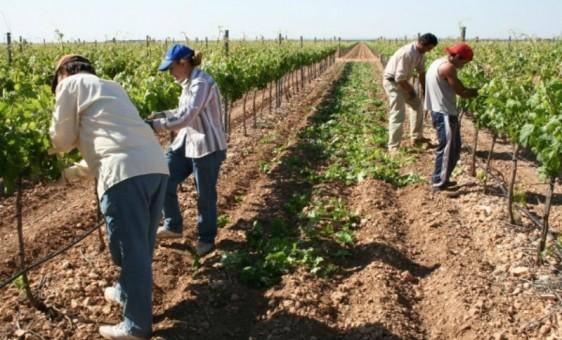 Obreros rurales formaron un nuevo gremio nacional por fuera de la Uatre
