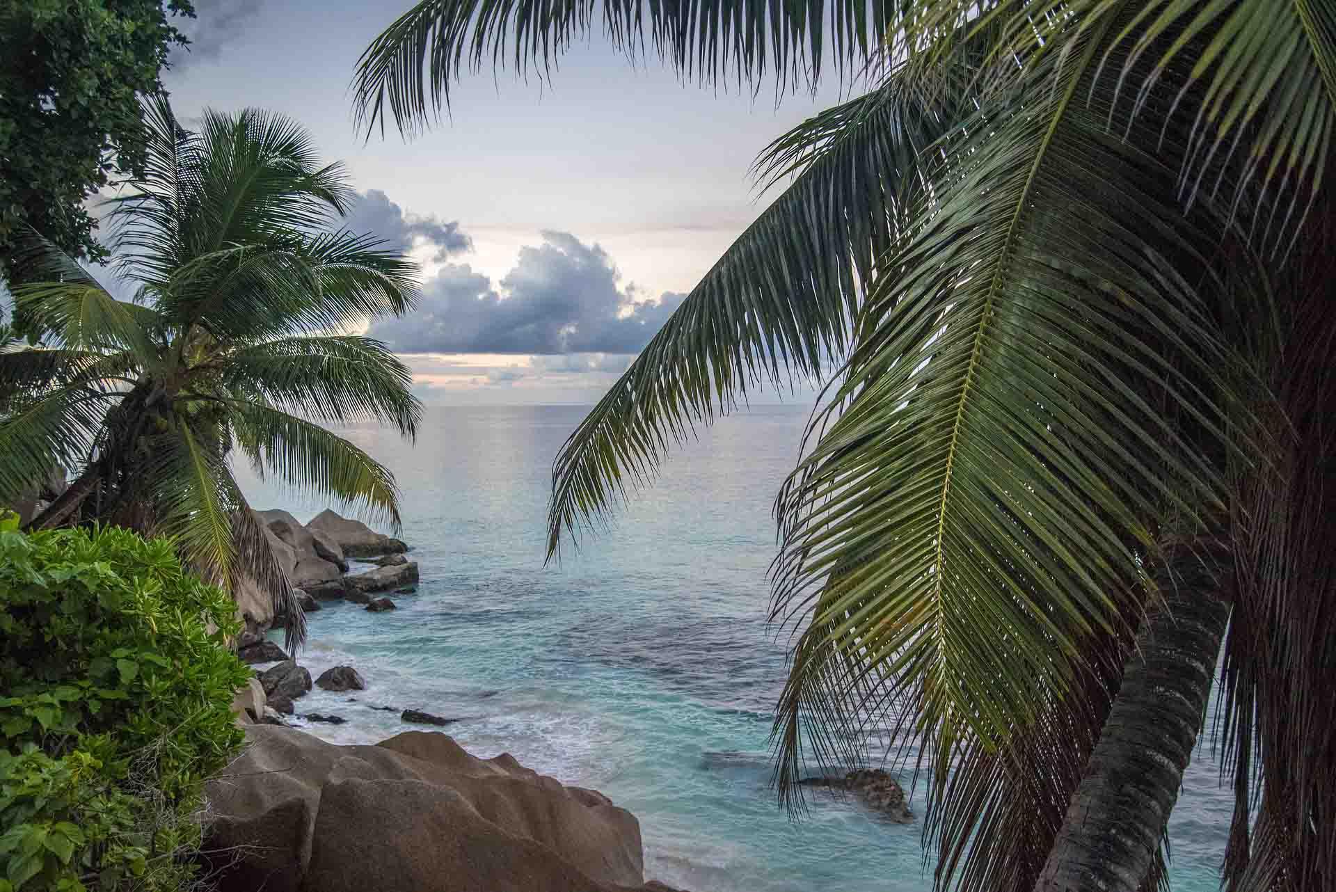 Islas Seychelles en directo