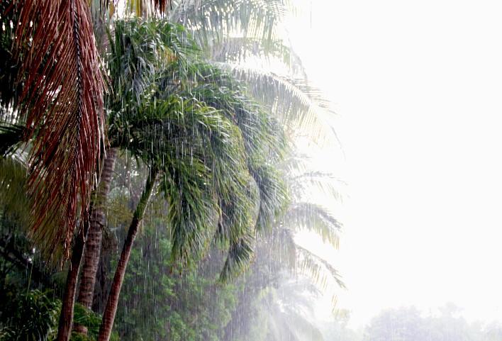 Tormenta tropical en Riviera Maya