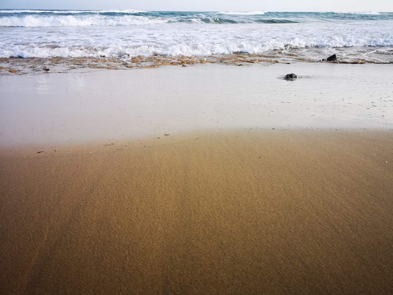 El Mar Menor... Va a ser el Mal Menor.. El Mal Mayor va a ser toda la Cuenca del Mar Mediterráneo
