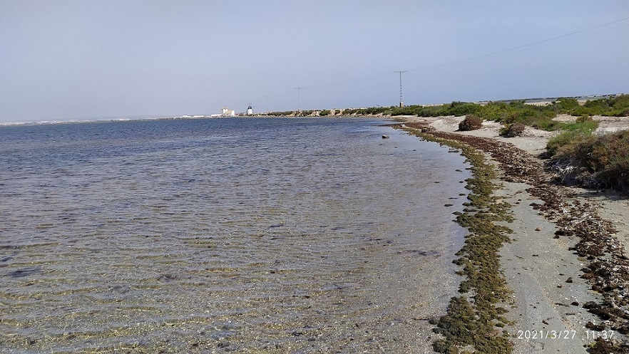 Playas de La LLana (Mar Menor), un paraje protegido, aunque no con mucho éxito