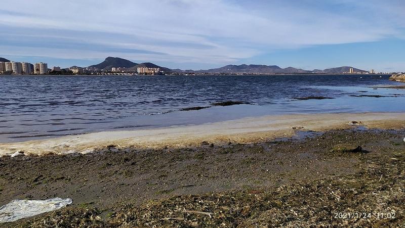Así está El Mar Menor en las Playas del Vivero, Los Alemanes y Paraíso