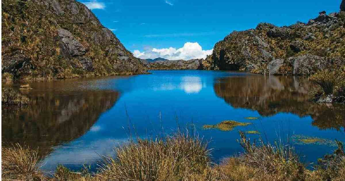 El Páramo Santurbán en peligro por nuevo proyecto