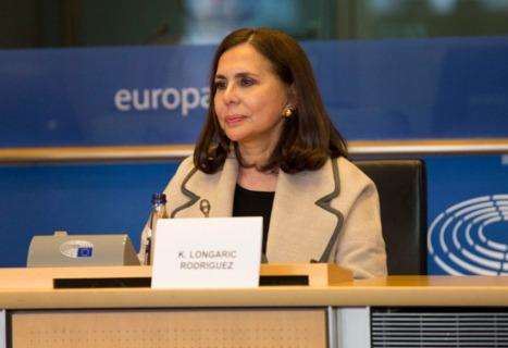 LONGARIC SOLICITA A LA UNIÓN EUROPEA APOYO EN ETAPA DE ELECCIONES