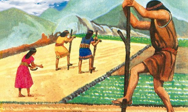 Video About Incas Work