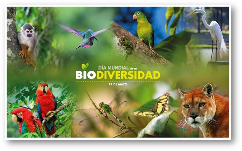 ¿Por qué Colombia es un país biodiverso?