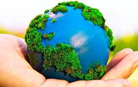 ¿Cuál es tu compromiso con el medio ambiente?