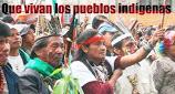MOVIMIENTO INDIGENA EN COLOMBIA