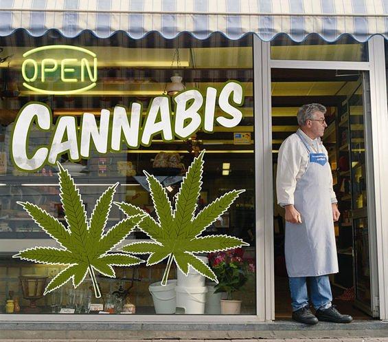 Venta de marihuana será legal en 2022