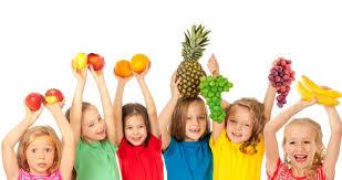 Función Nutrición