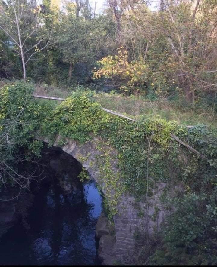 El puente medieval de Campomanes, tomado por la vegetación