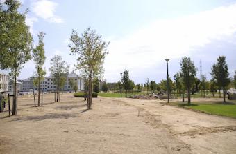 Comienzan las obras de remodelación del parque Miguel Ángel Blanco de Boadilla
