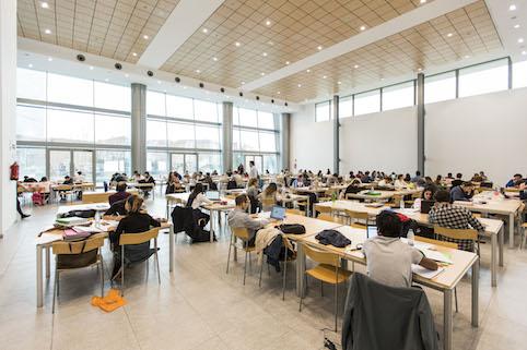 Las bibliotecas de Las Rozas abren 24 horas de jueves a domingo