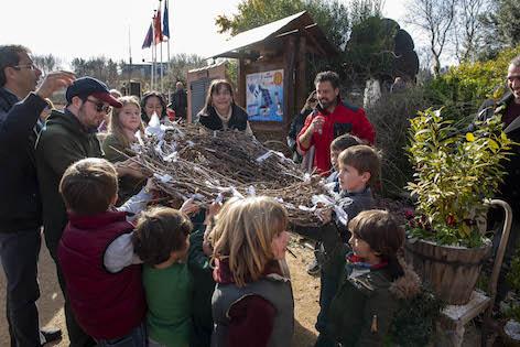 Pequeños voluntarios construyen una nueva casa para las cigüeñas de Pozuelo