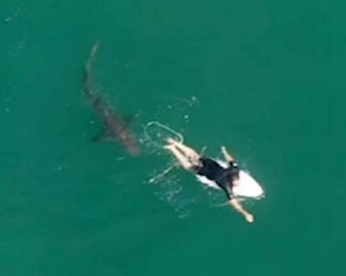 La polémica del vídeo de un tiburón acercándose a un surfista