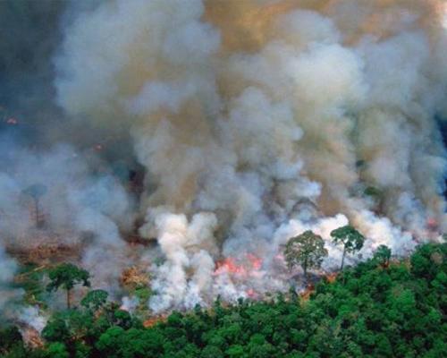La selva del Amazonas arde sin control