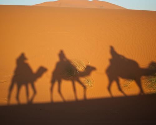 ¿Los Reyes Magos llegan en camello o en dromedario?