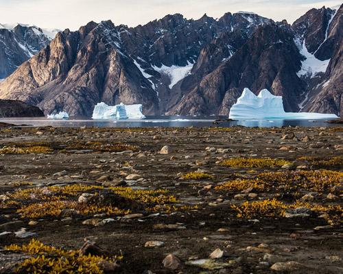 El Ártico, en alerta: fundido del hielo al verde