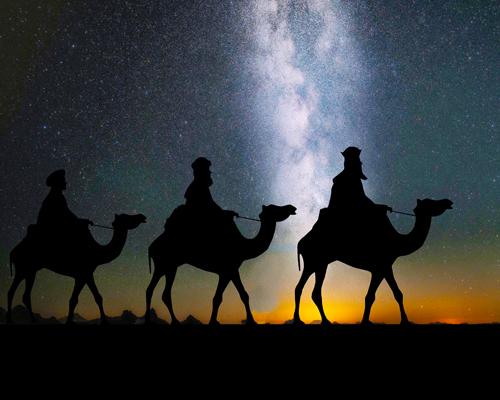 Queridos Reyes Magos, nada de mascotas este año