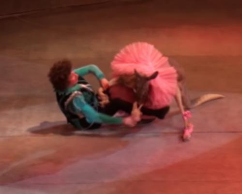Golpean a un canguro disfrazado en un circo ruso
