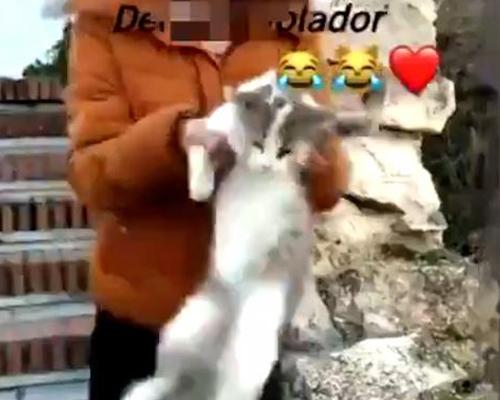 Publican el vídeo de una joven lanzando un gato por un barranco
