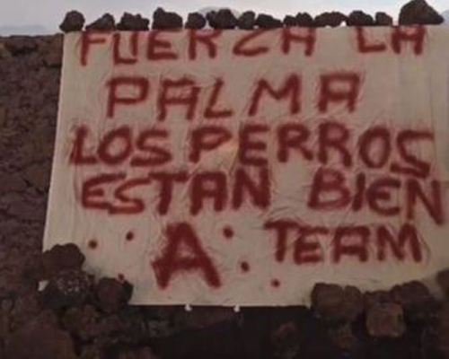 """Un anónimo """"Equipo A"""" se atribuye el rescate de los perros de La Palma"""